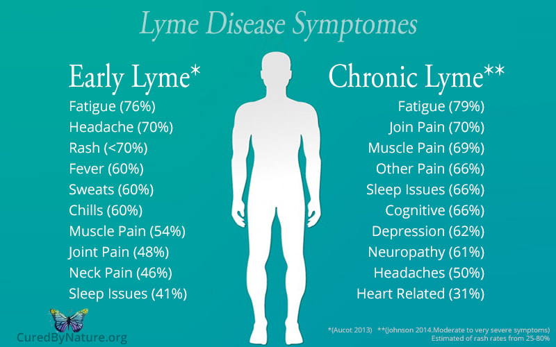 Lyme Disease Natural Treatments - Michigan Ozone Center